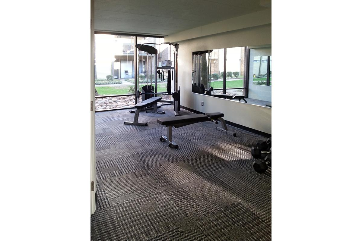 The Weight Benches In The Fitness Center