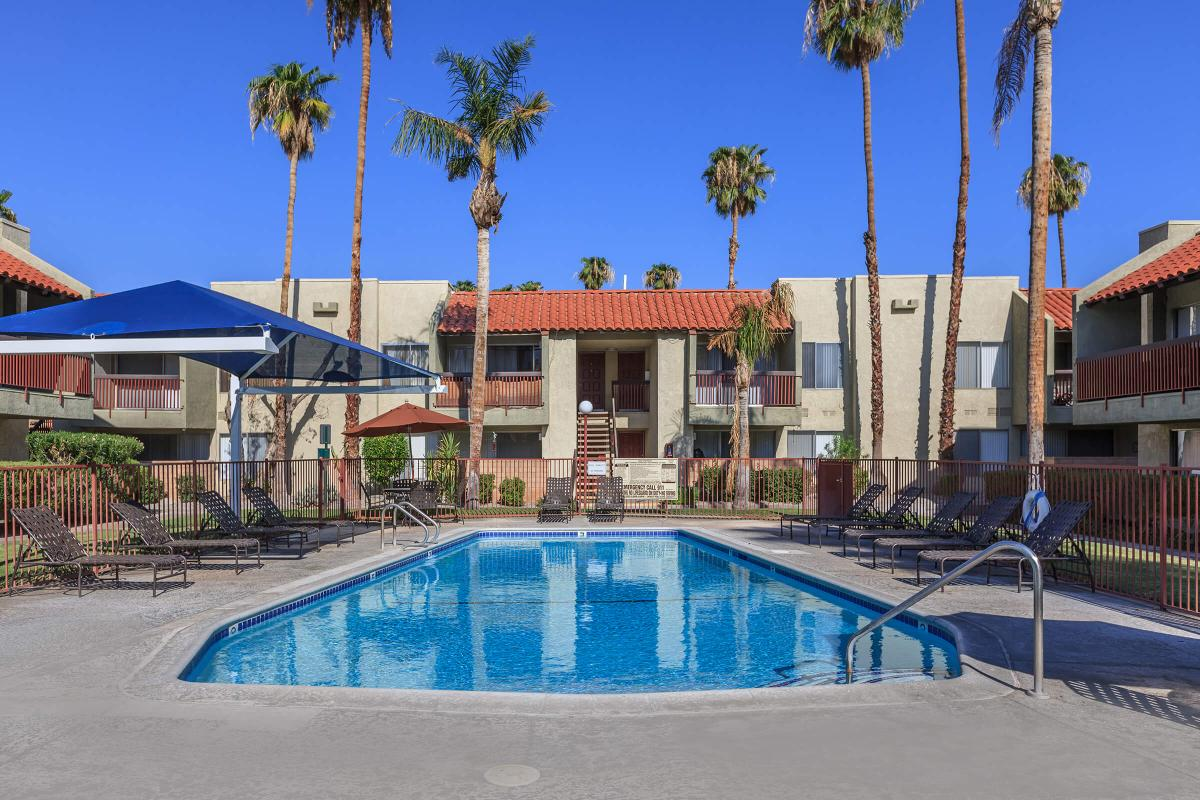 a pool with palm trees and a building in the background