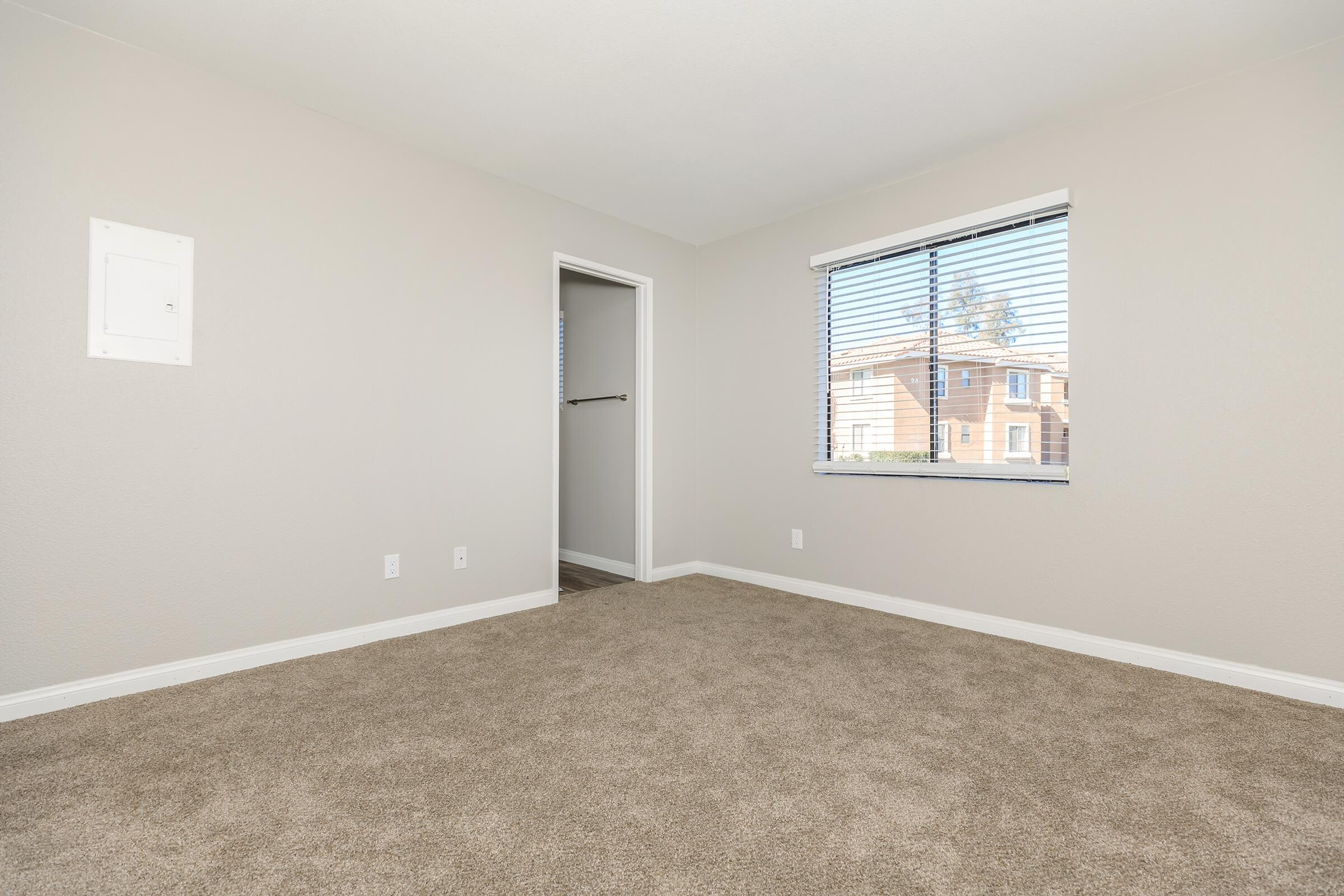 WALL TO WALL CARPET IN SMOKETREE APARTMENTS