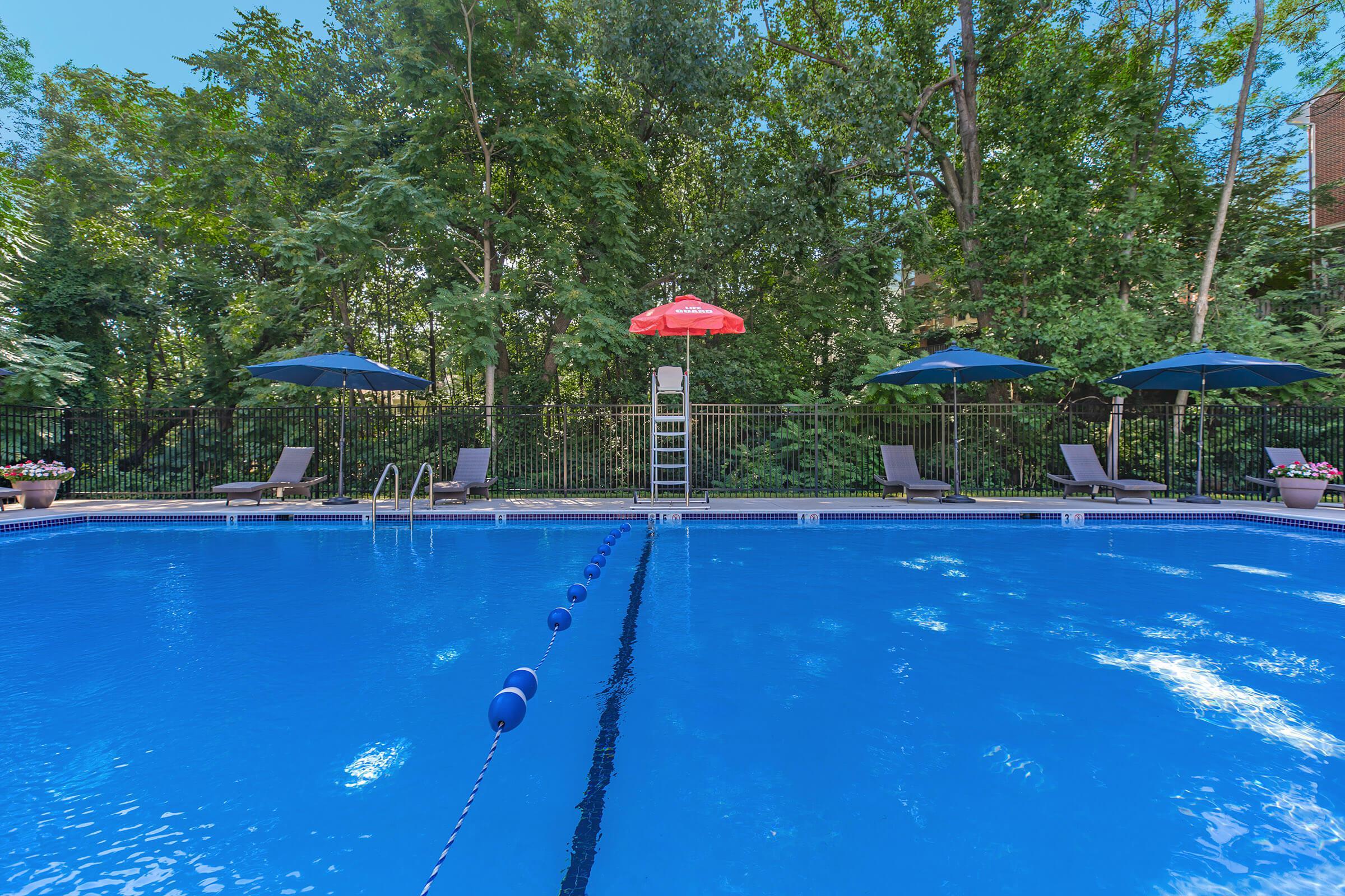 Pool at The oliver in Alexandria in Alexandria, VA