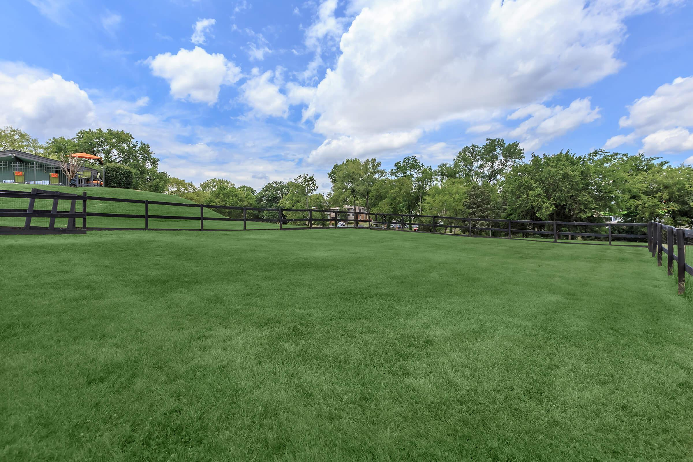 beautiful, green dog park at Sunrise Apartments in Nashville, Tennessee