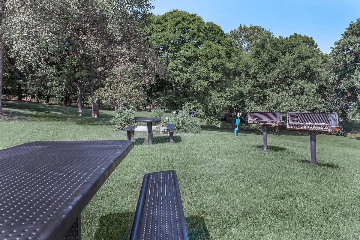 Picnic Areas with Grills at Sunrise Apartments