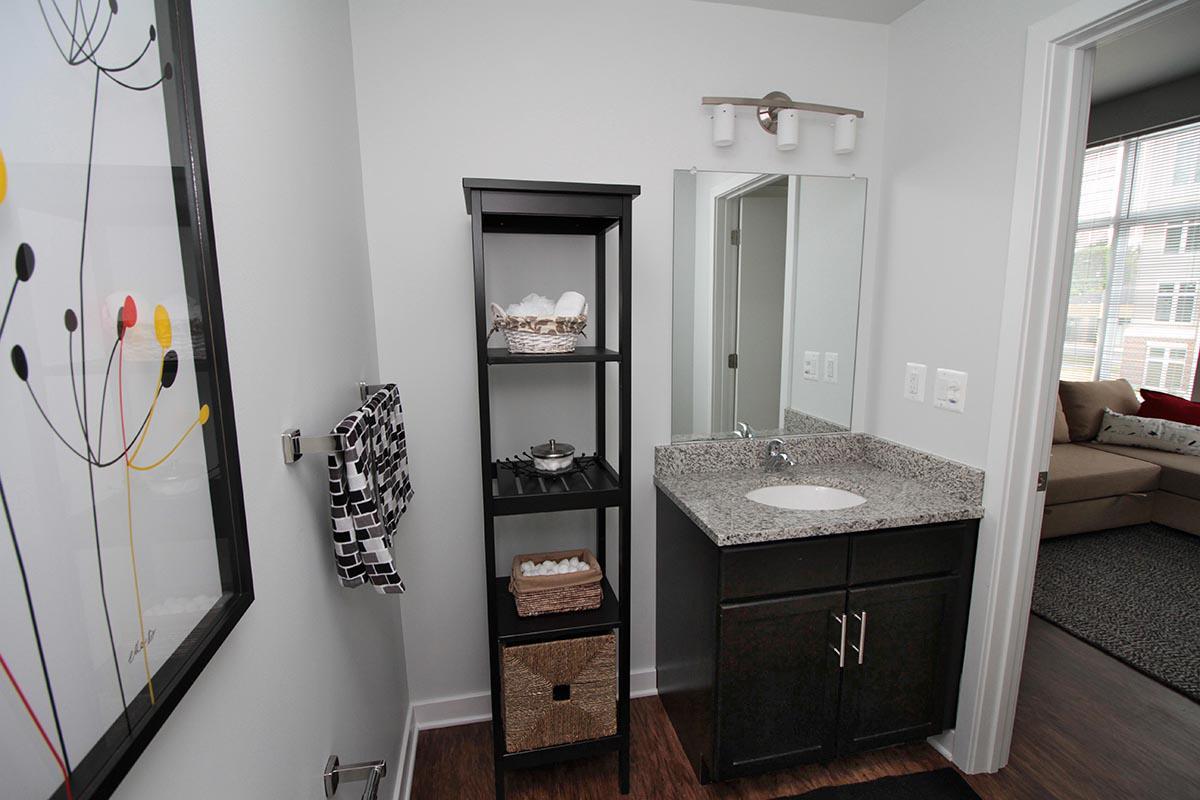 Bathroom at C Street Flatsin Laurel MD
