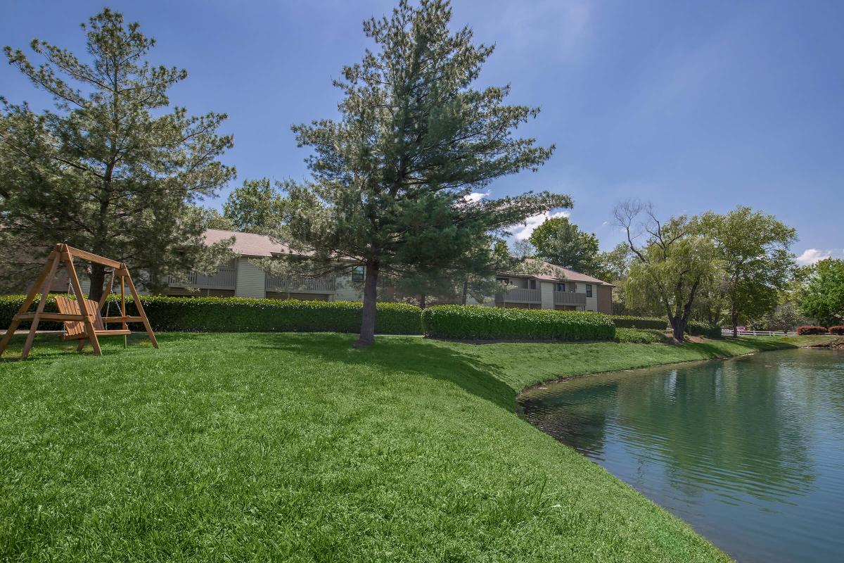 a pond with grass and trees