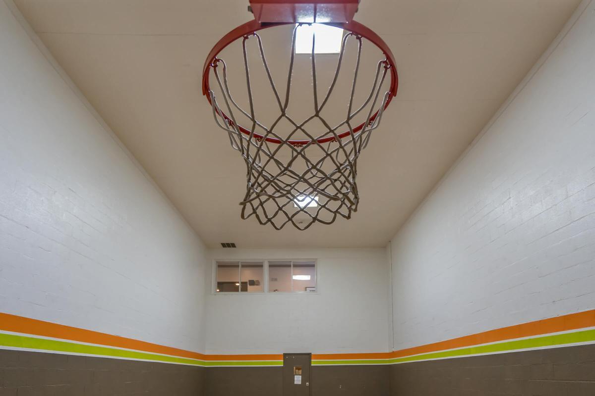 Great Indoor Basketball