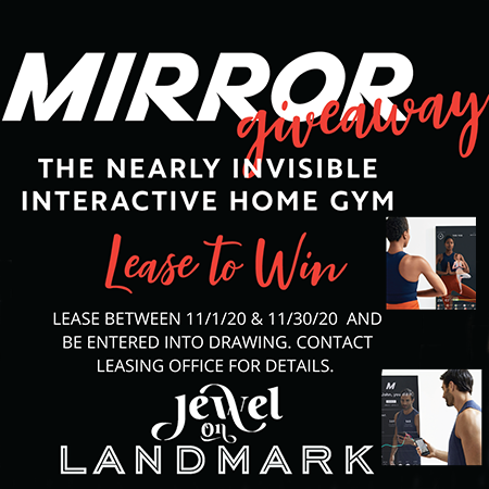 Mirror Giveaway. The nearly invisible interactive home gym. Lease to win. Lease between 10 28 20 and 11 30 20 and be entered into drawing. Contact leasing office for details. Jewel On Landmark.