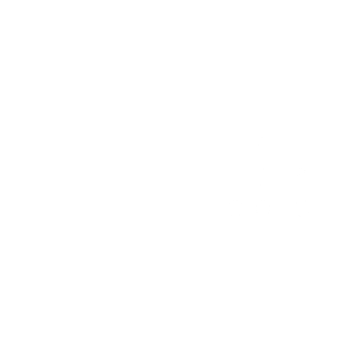 The Conerly Group Logo