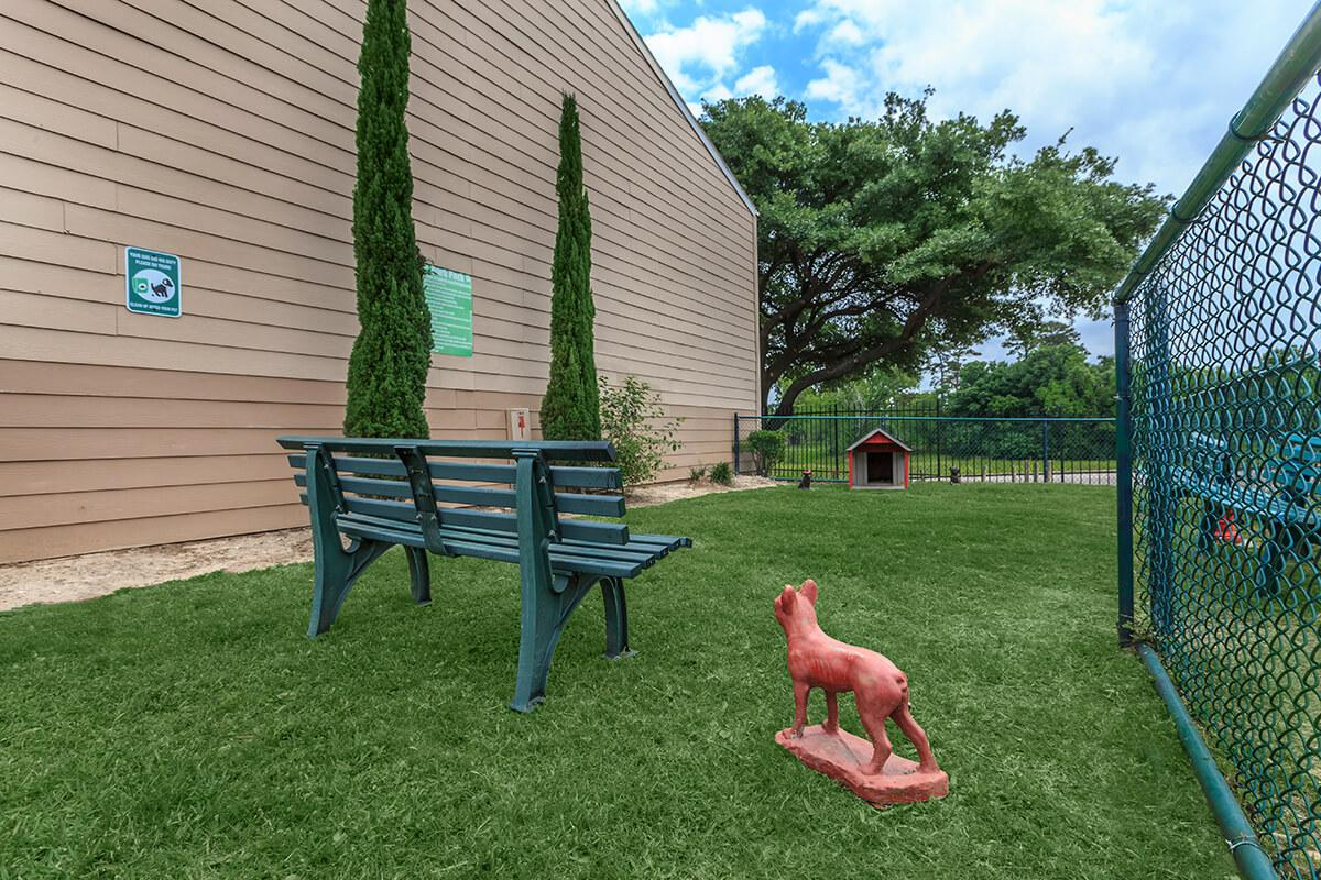 a person in a green yard