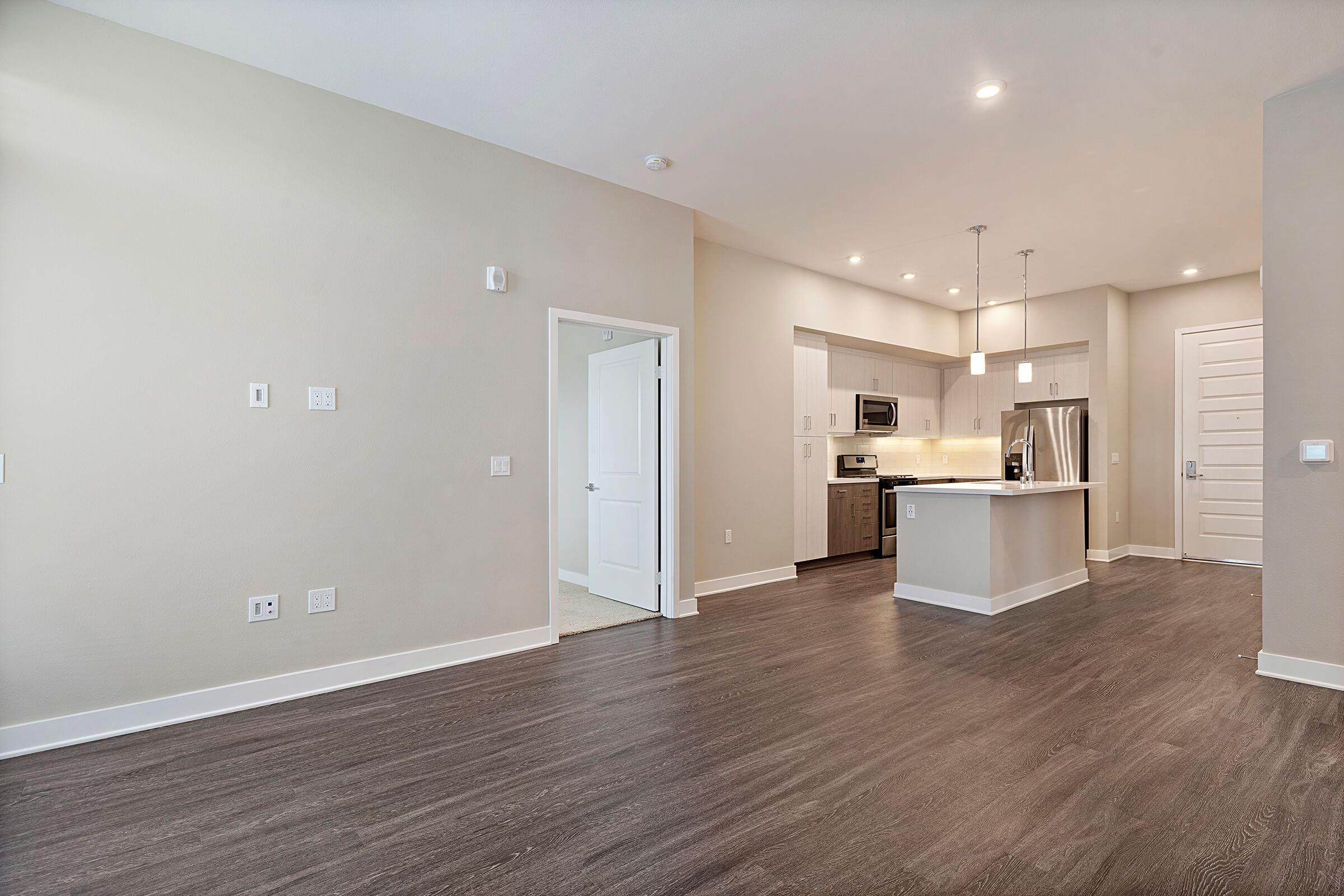 Living room and kitchen with wooden floors