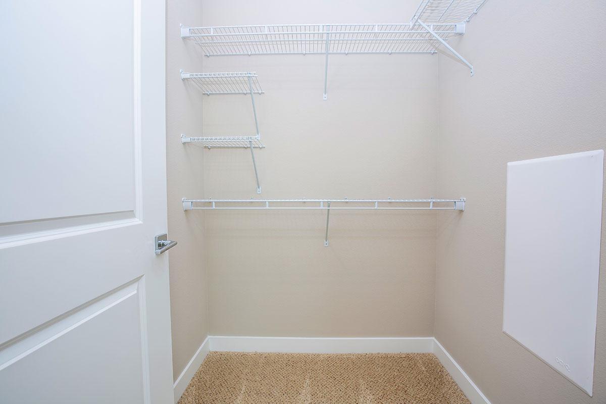 Unfurnished walk-in closet with carpet
