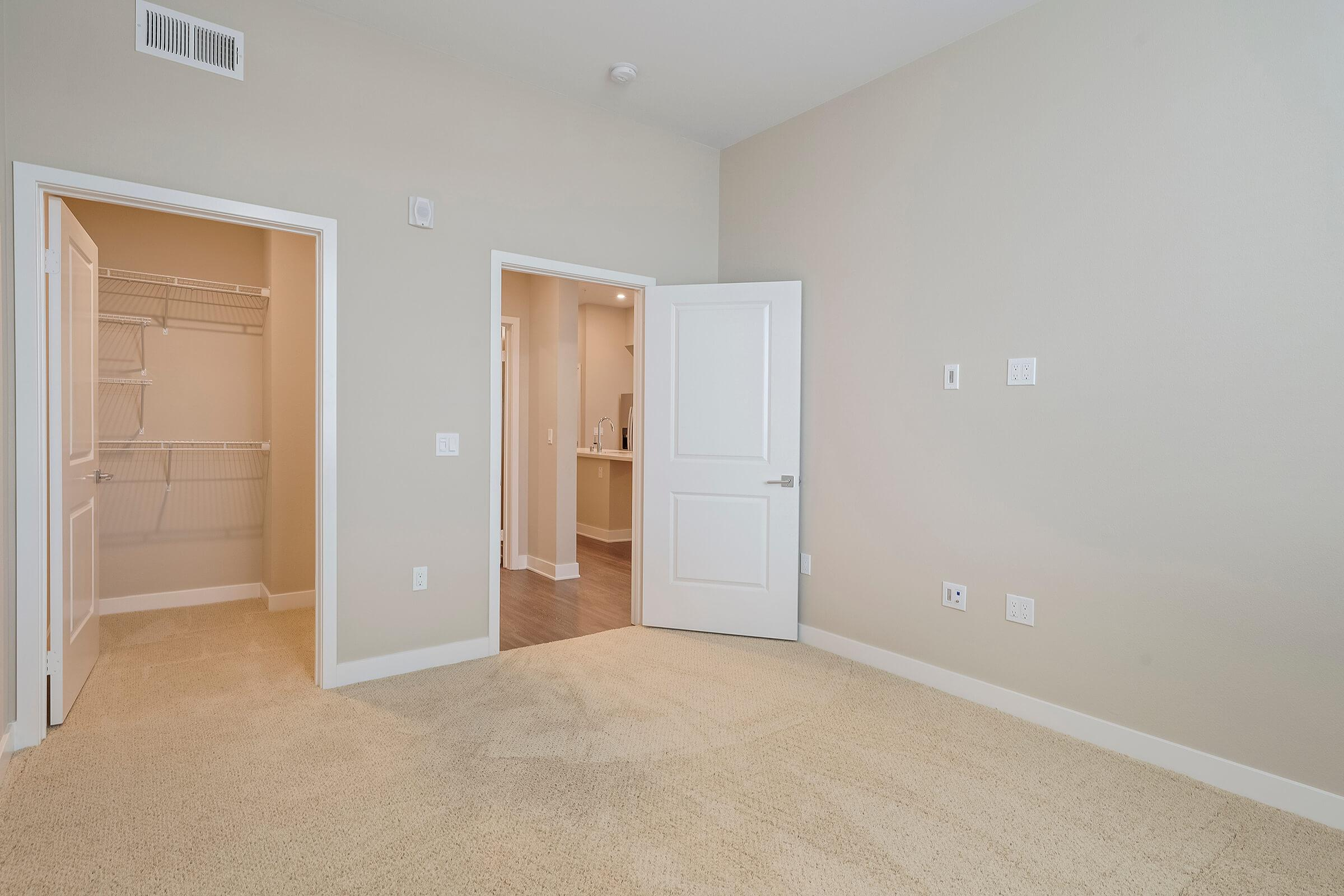 Carpeted bedroom with walk-in closet