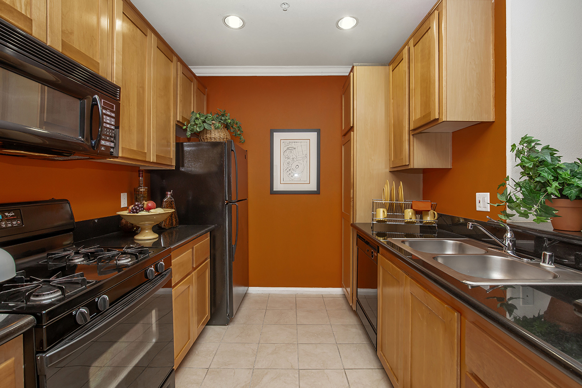 Gourmet Kitchens in Our Apartments