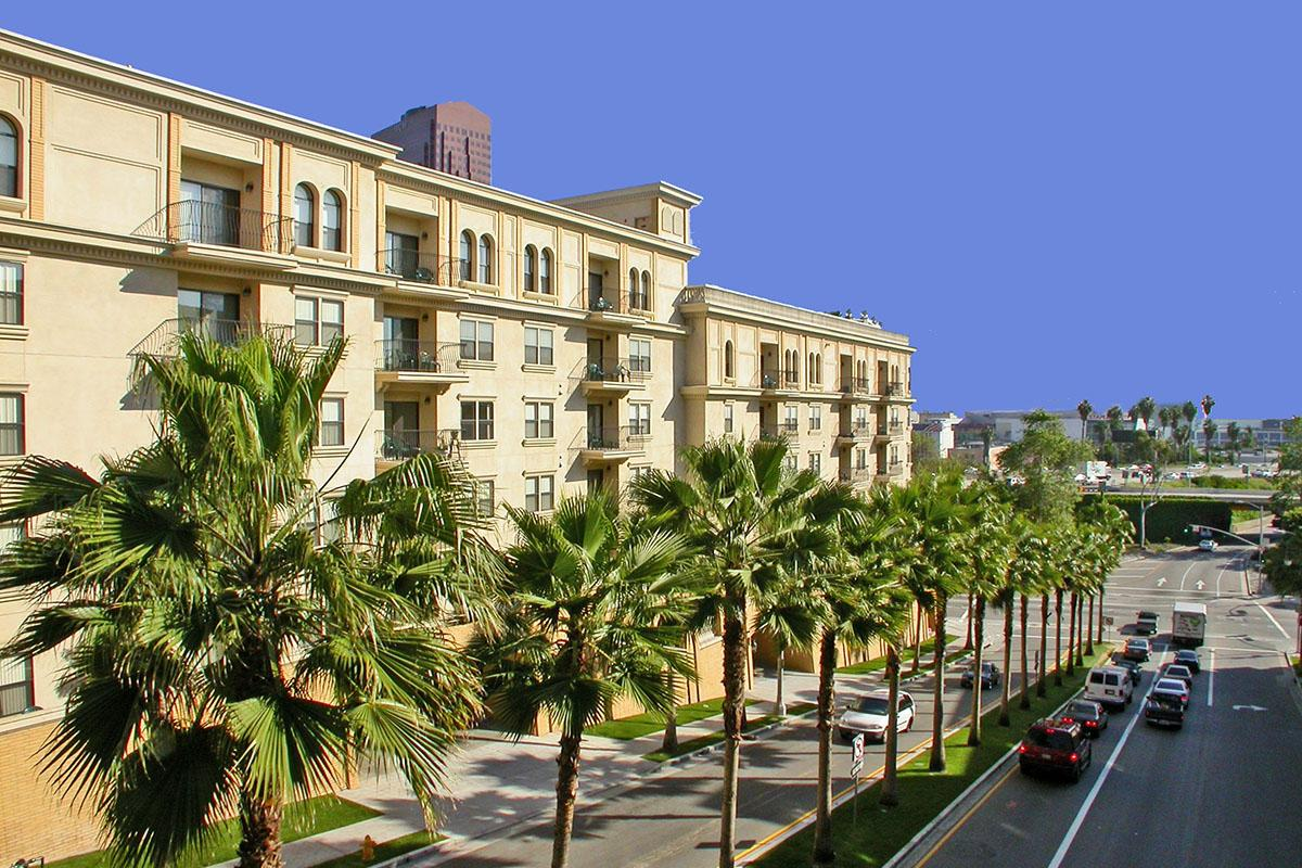 a group of palm trees with a building in the background