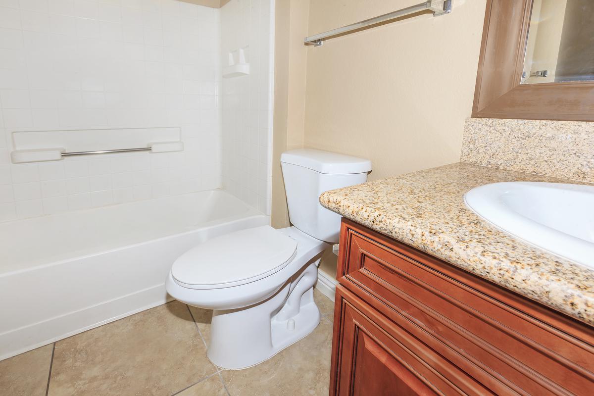 MODERN BATHROOM AT LAS BRISAS DE CHEYENNE APARTMENTS IN LAS VEGAS, NEVADA