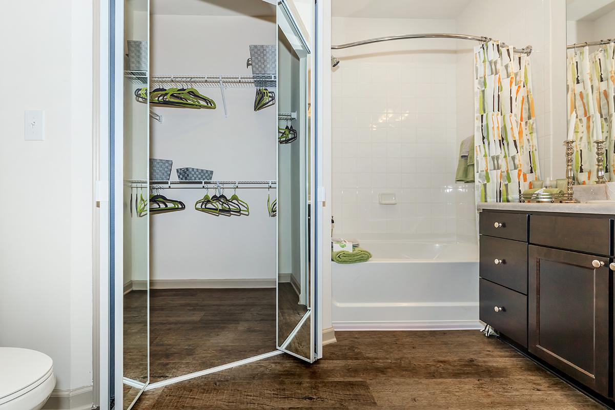 Bathroom with Large Closet at The Point at Waterford Crossing