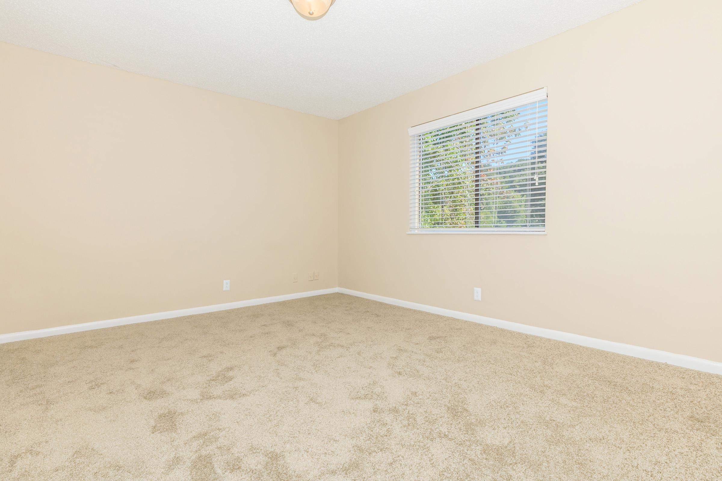 Cozy bedroom with carpet