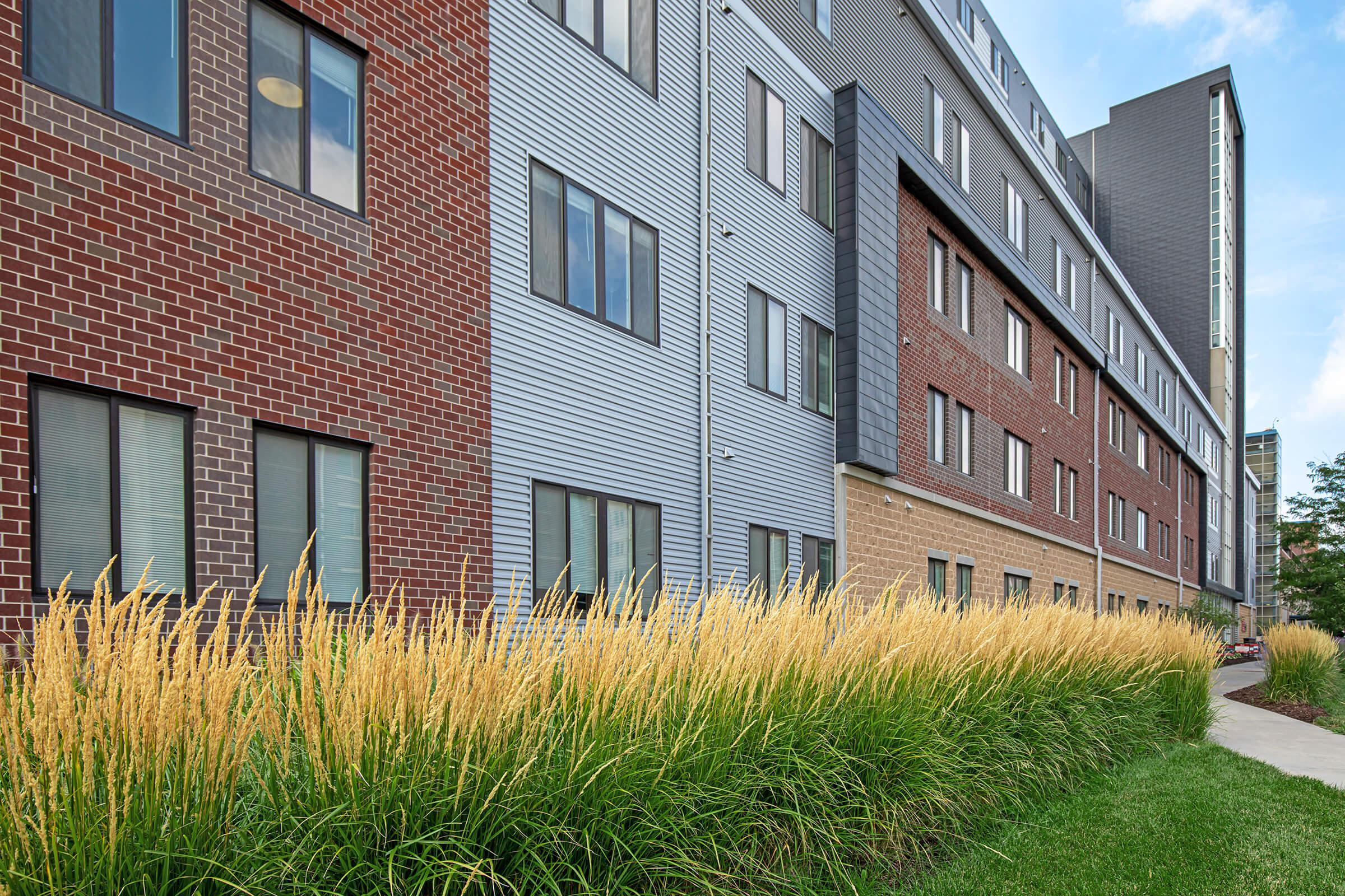 tall grass in front of a brick building