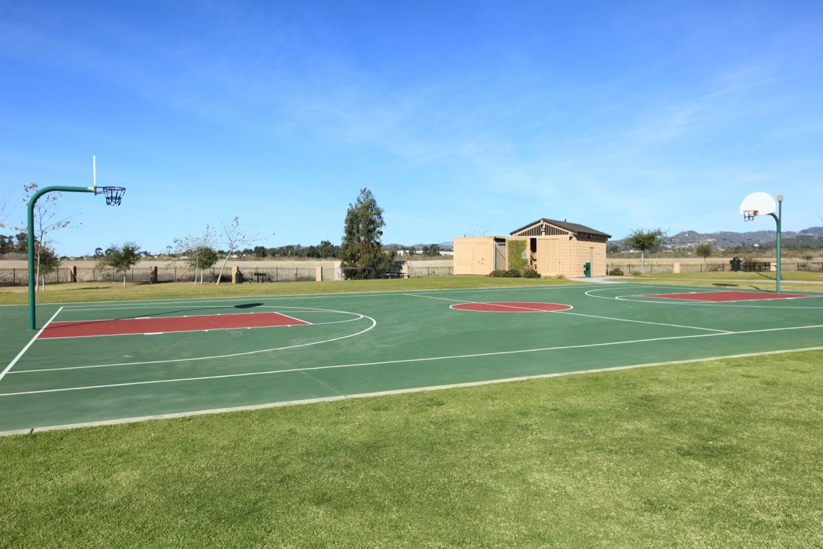Basketball Court at The Vines at Riverpark