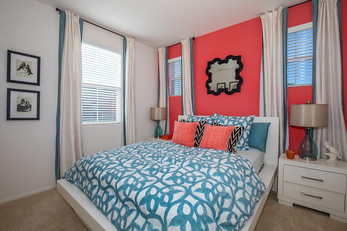 Accent walls available at The Vines at Riverpark