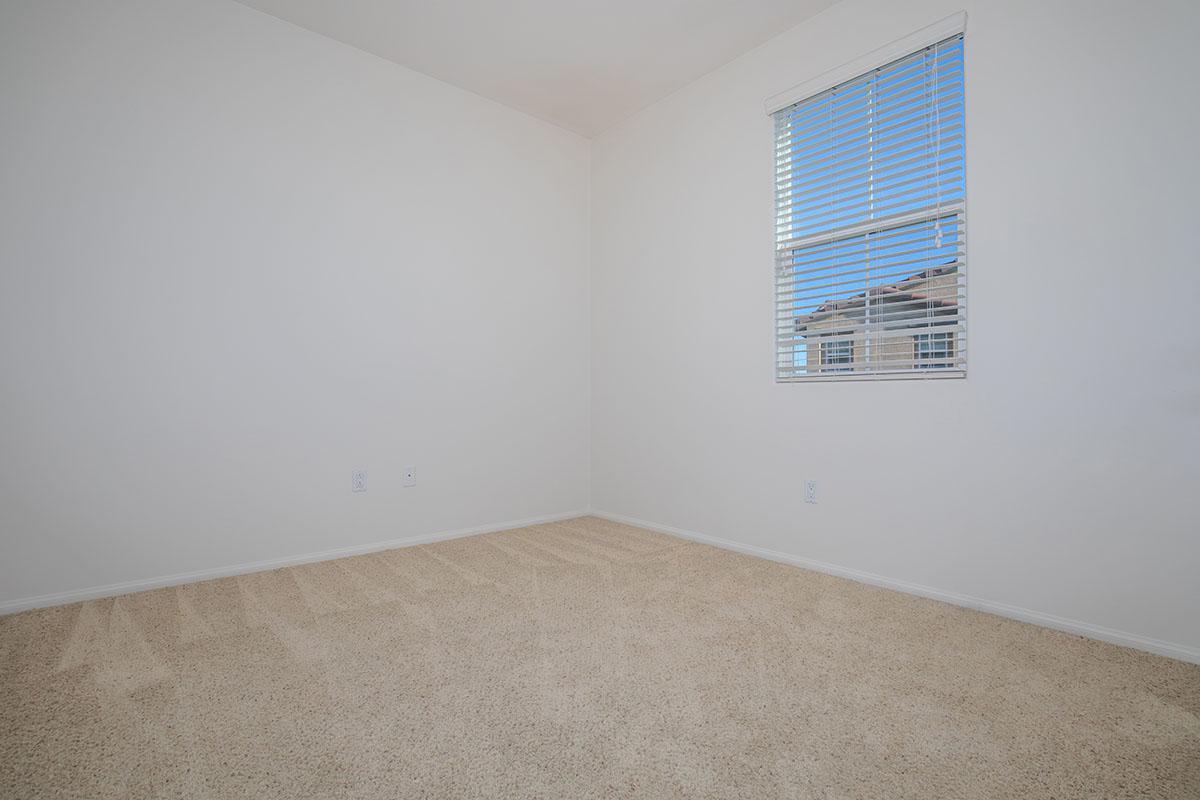Plush carpeting and mini-blinds