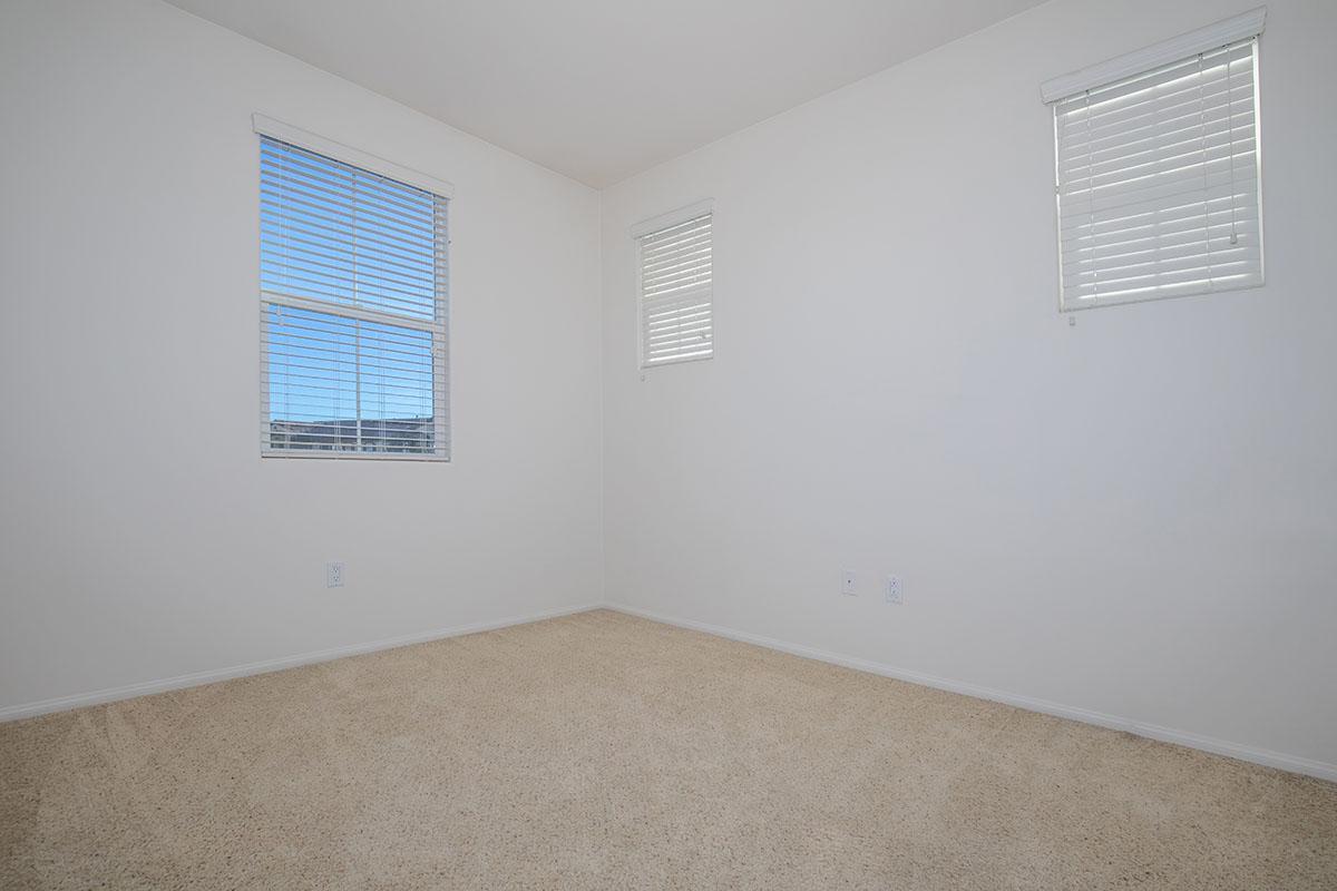 Plush carpeting and mini blinds