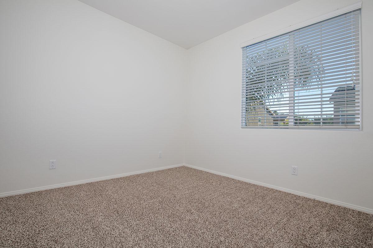 Mini blinds and plush carpeting