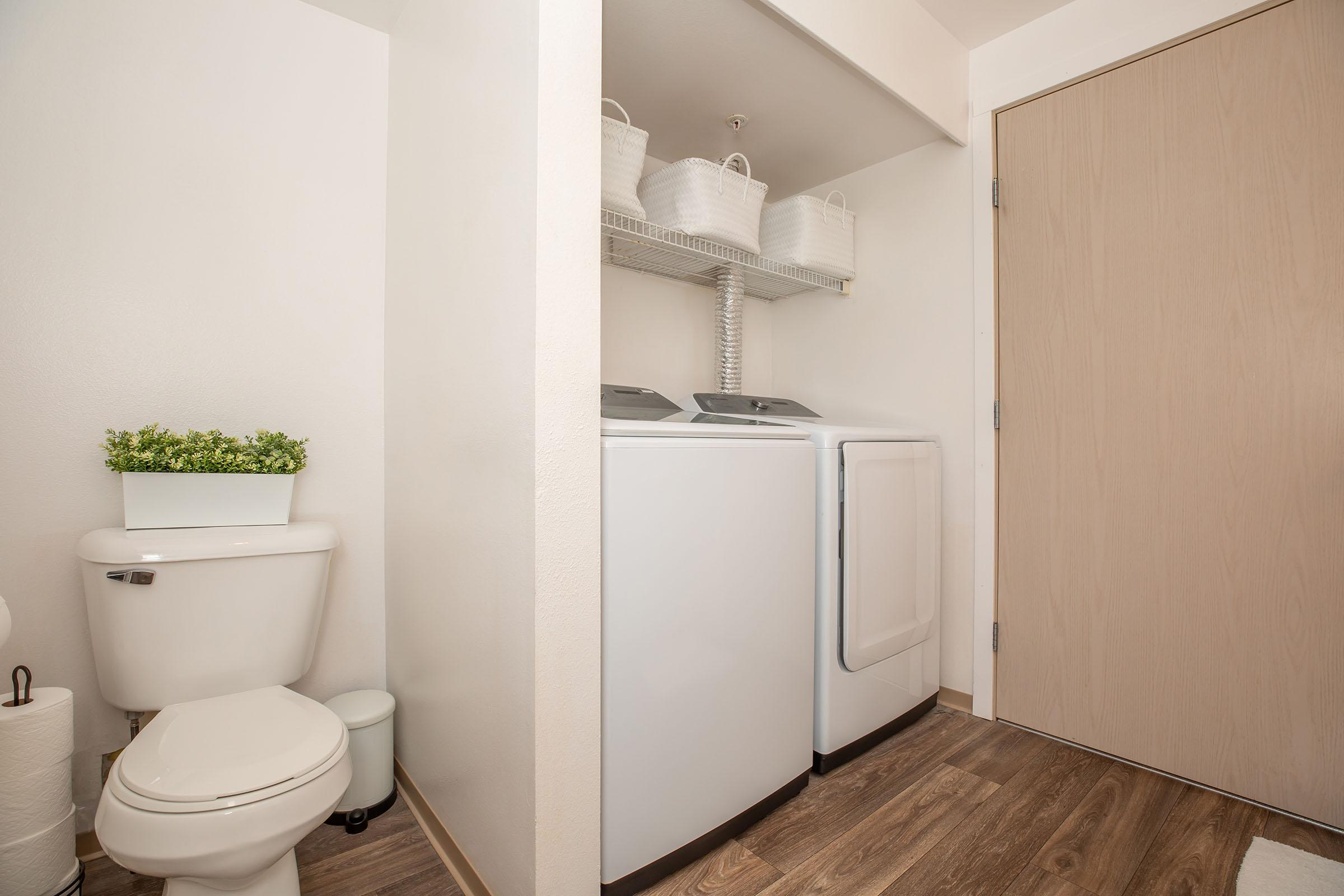 SLEEK WASHER AND DRYER IN HOME