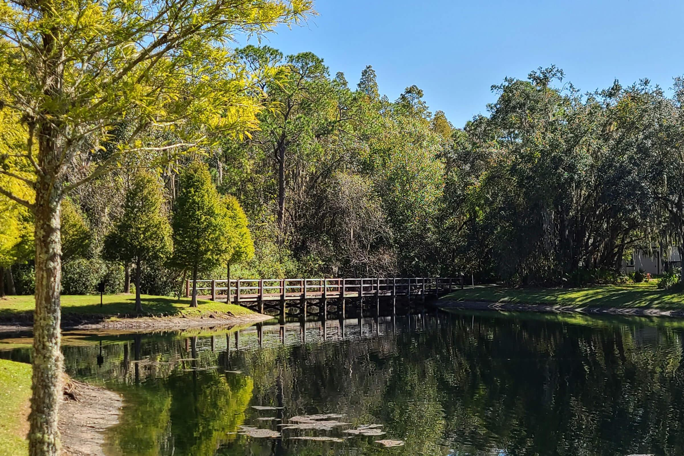 a bridge over a body of water surrounded by trees