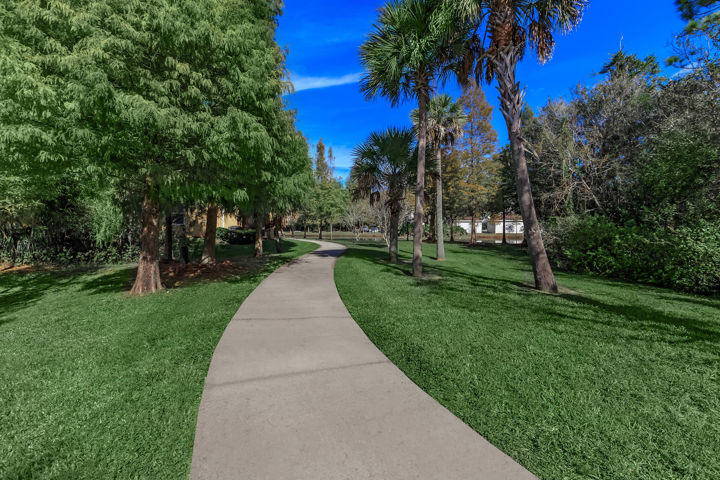 a path with grass and trees