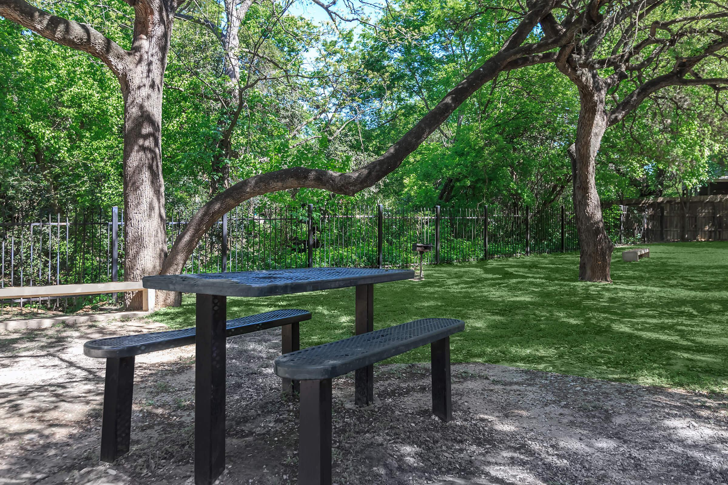 an empty park bench next to a tree
