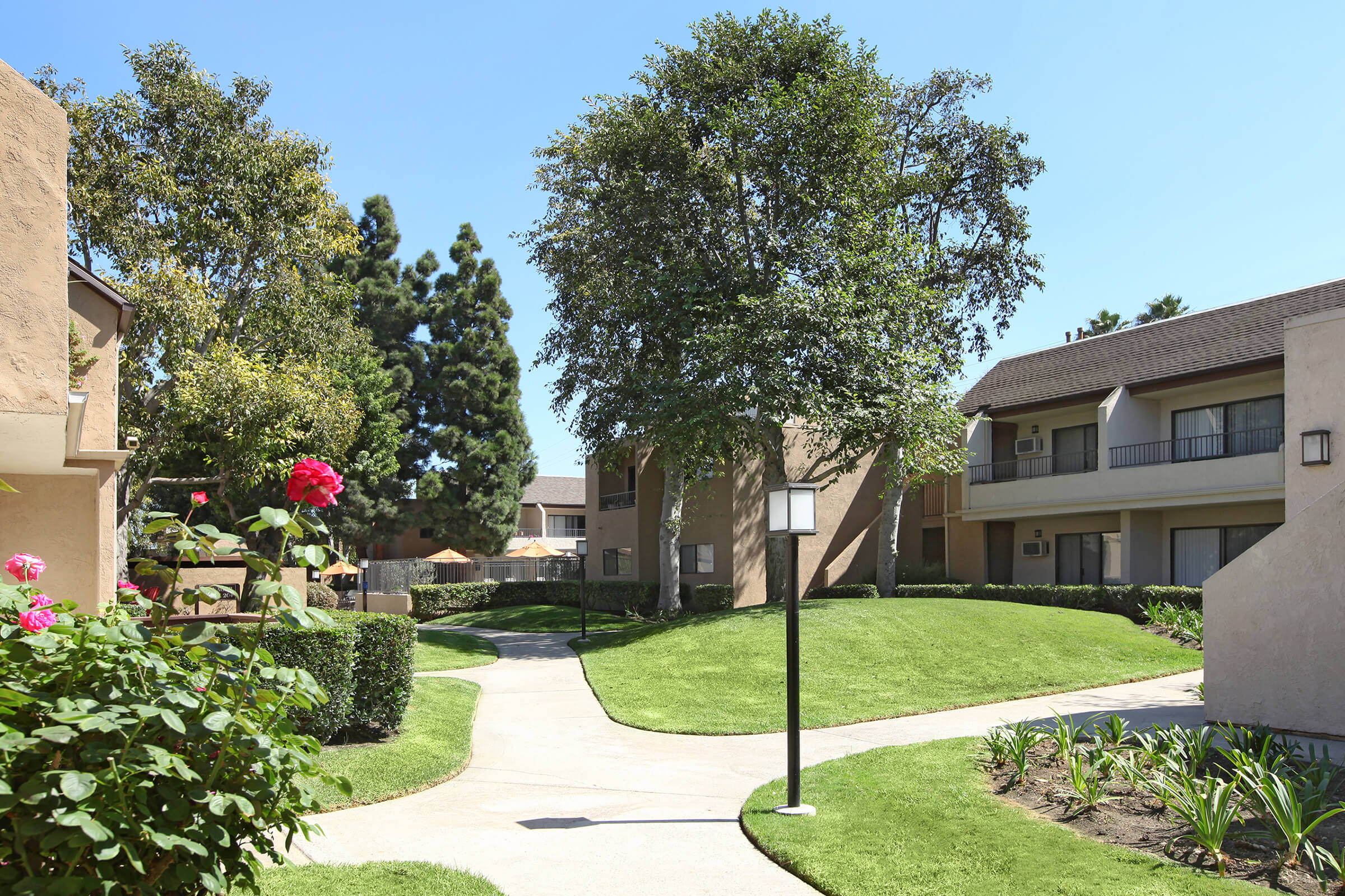 Picture of Mesa Pines Apartments