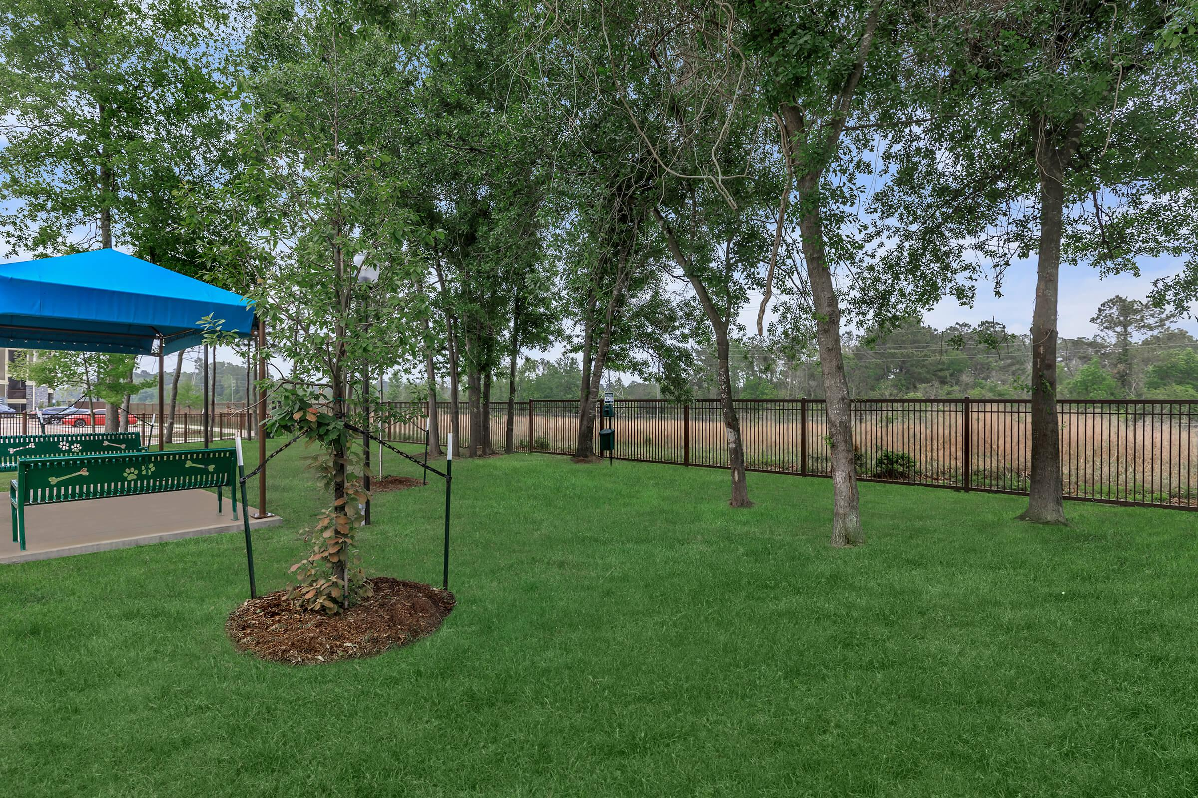 Green grass, trees, and bench seating at the Park at Tour 18 dog park.