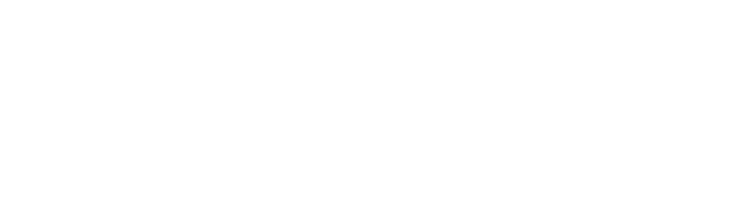 Silver Mountain Real Estate Group Logo