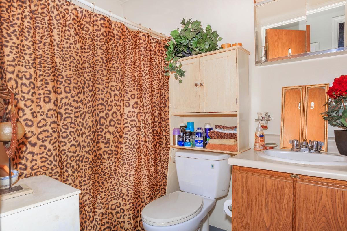 a kitchen with a shower curtain