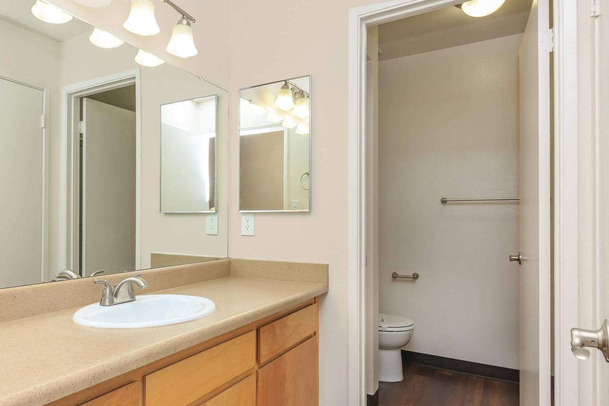 a double sink and large mirror