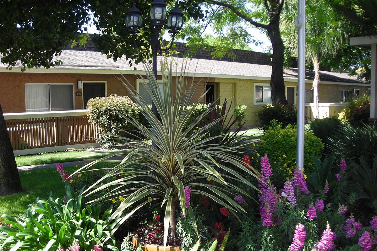 Prescott Pointe has beautiful landscaping