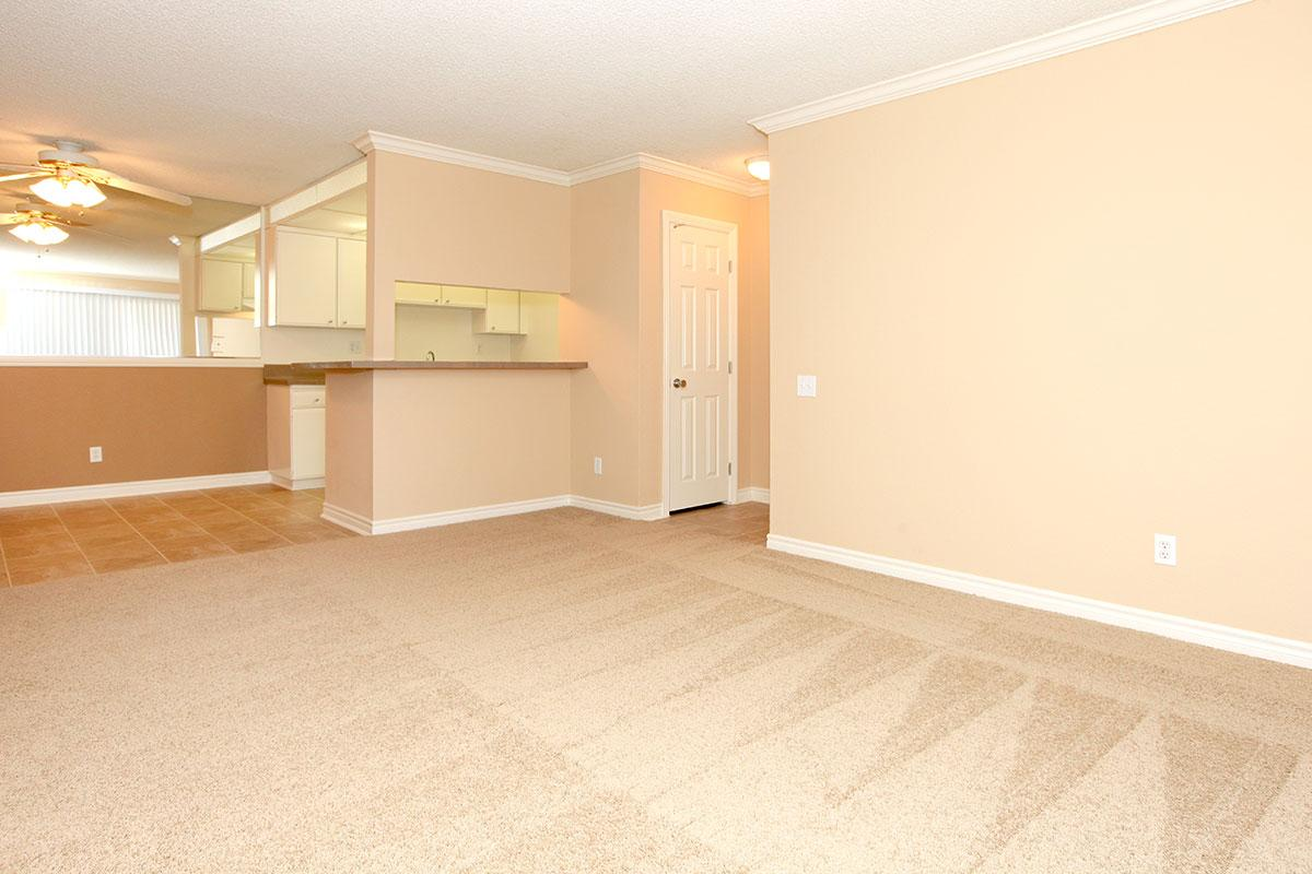 Vacant living room with carpet