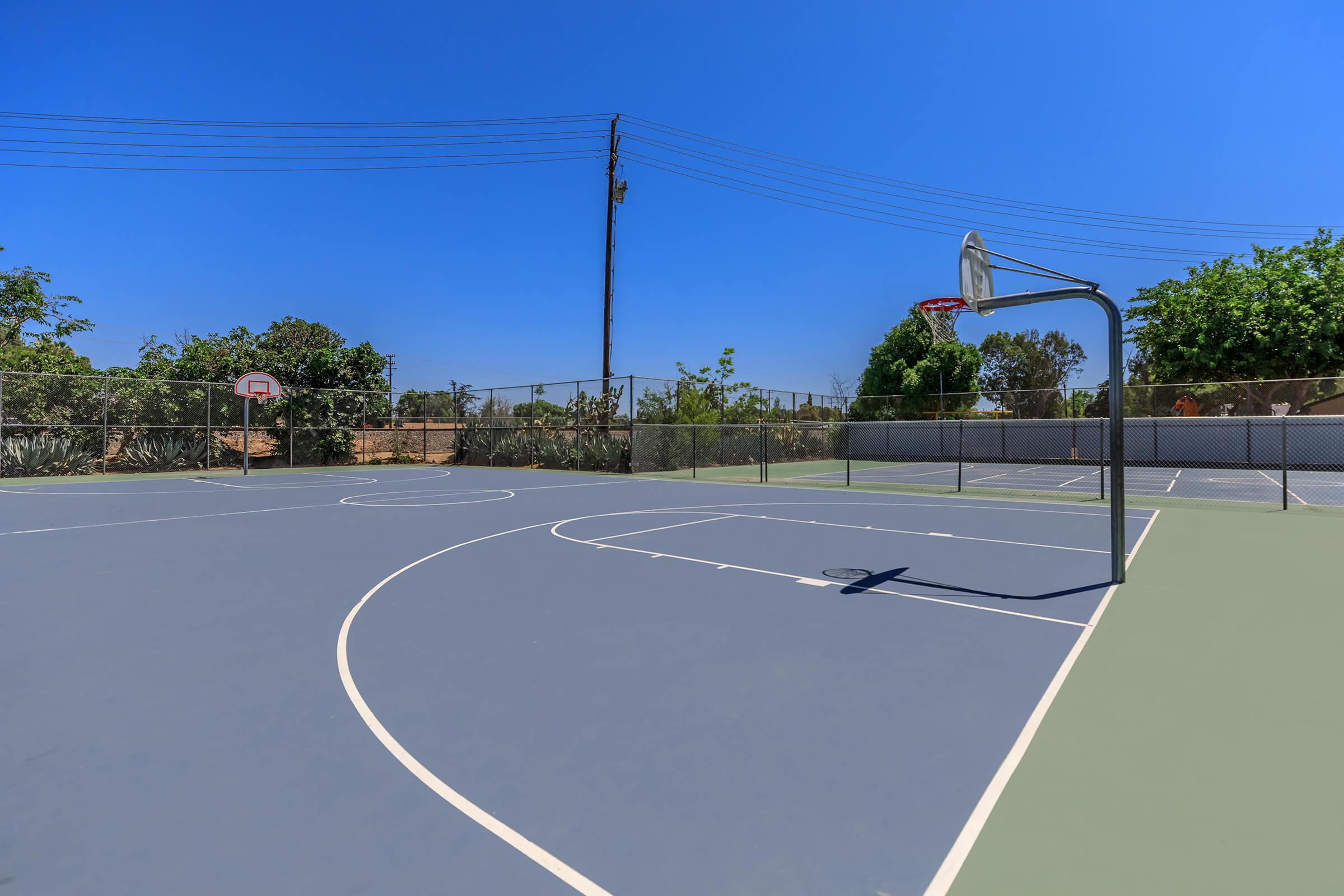 The Parks at Fig Garden basketball court