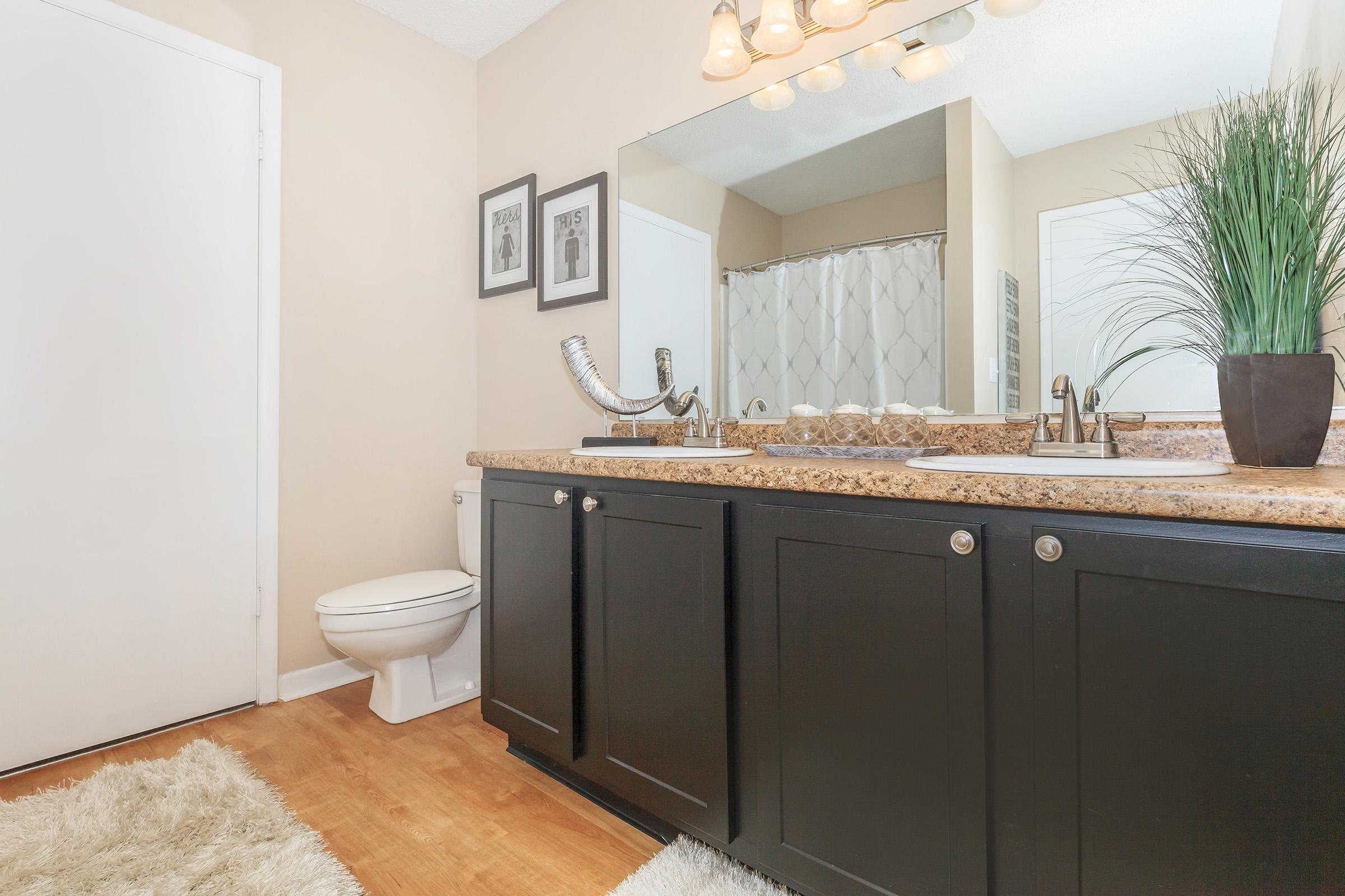 Waterford Village in Knoxville hosts dual sink vanities
