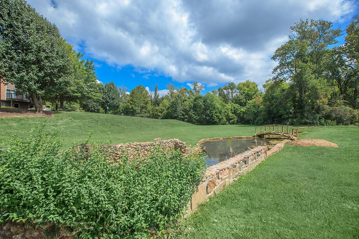 Lush mature landscaping