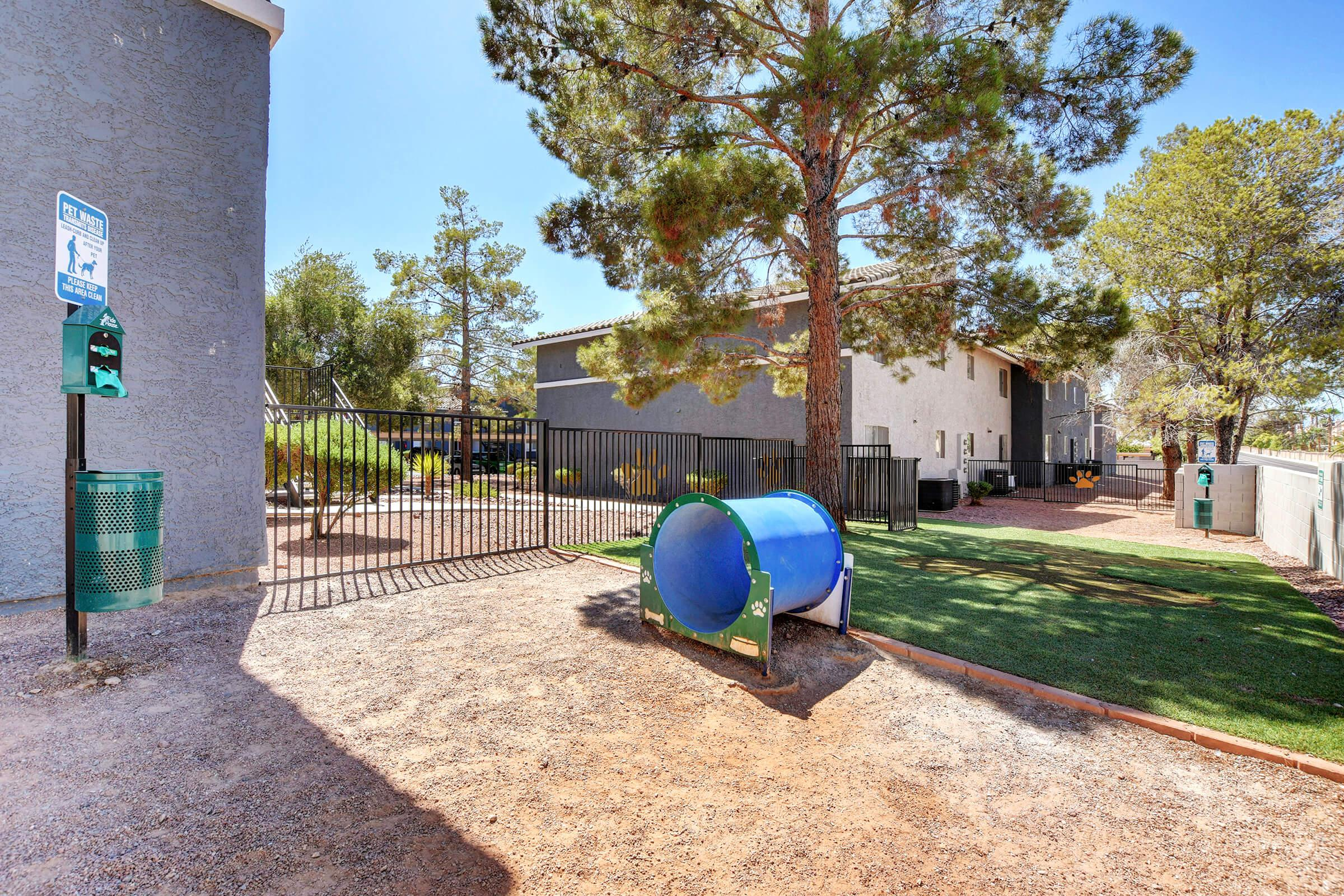 Play Fetch Here at Sunset Hills, Henderson, Nevada
