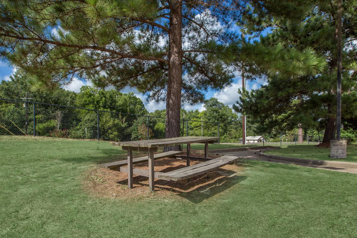 a bench in a grassy area with trees in the background