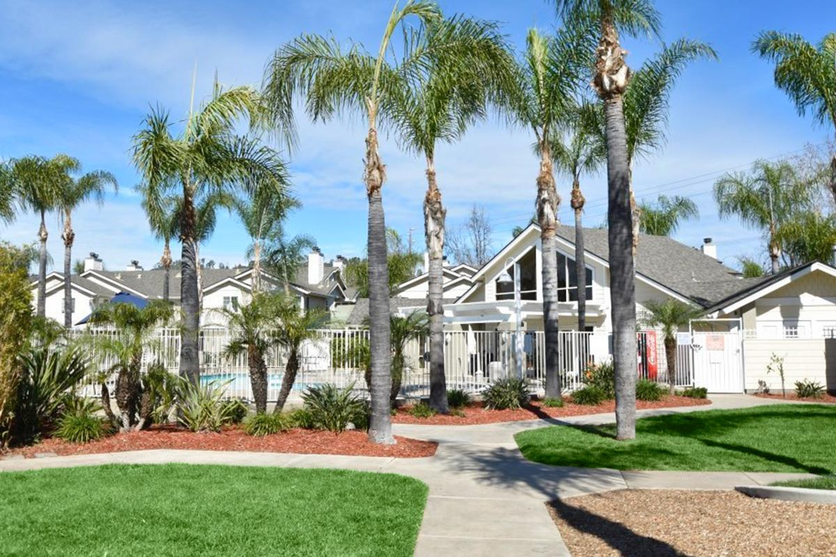 a palm tree in front of a house
