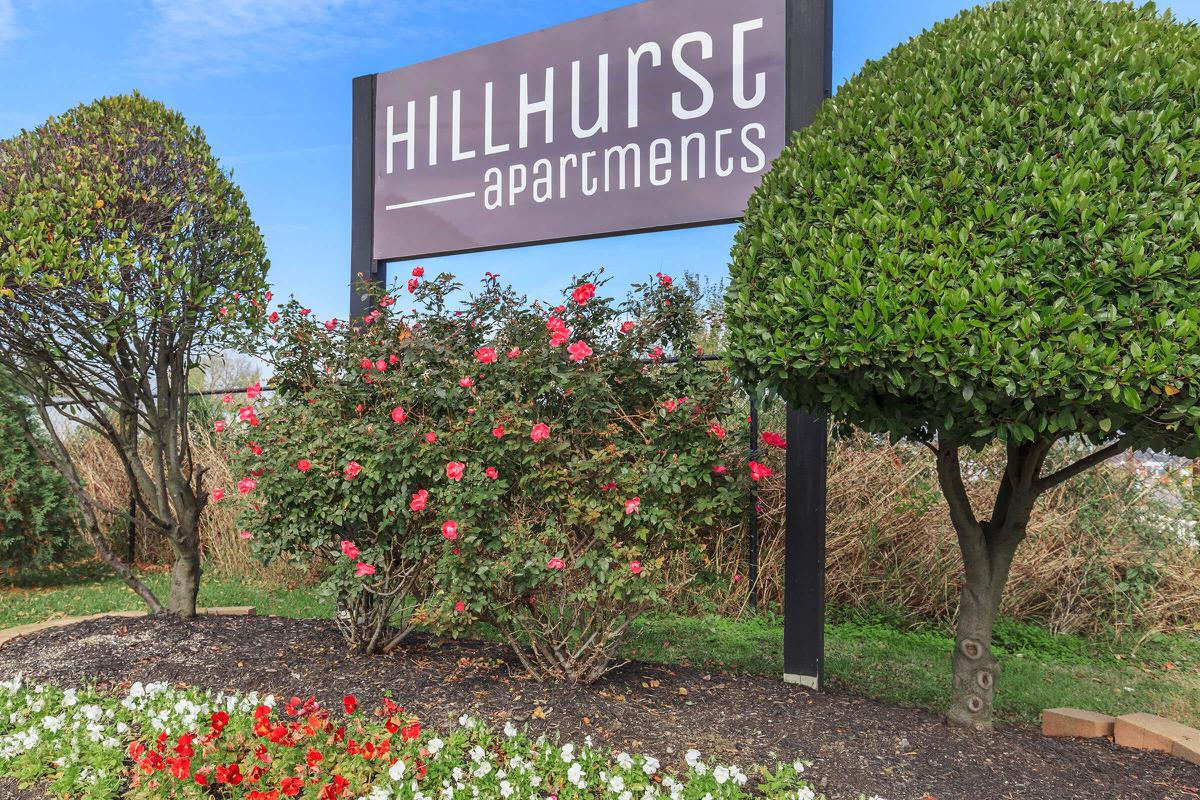 Welcome Home To Hillhurst Apartments
