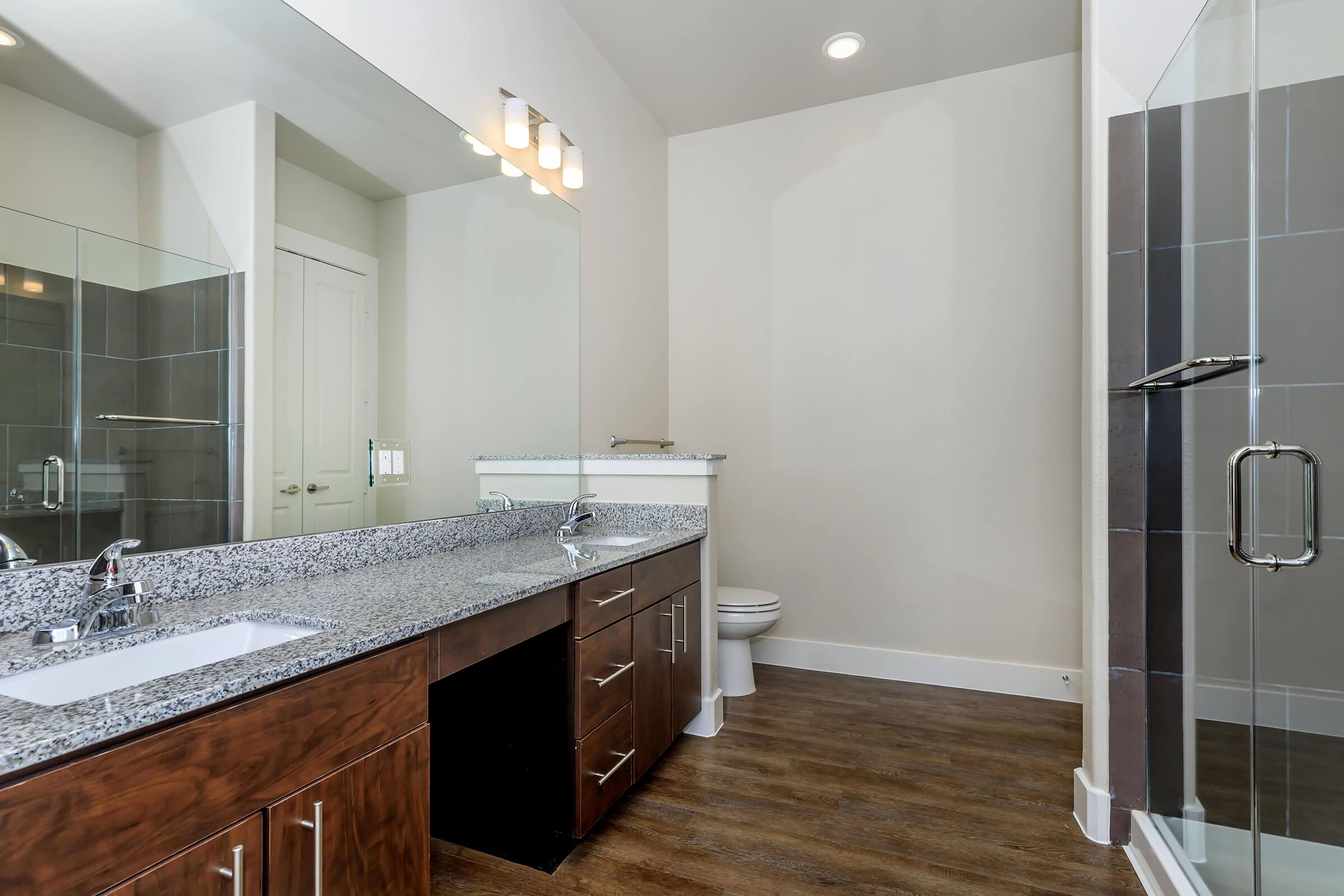 BATHROOM WITH PLENY OF COUNTER SPACE
