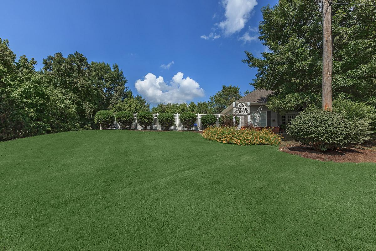 spacious grass field at Cedar Pointe Apartments in Colombia, Tennessee