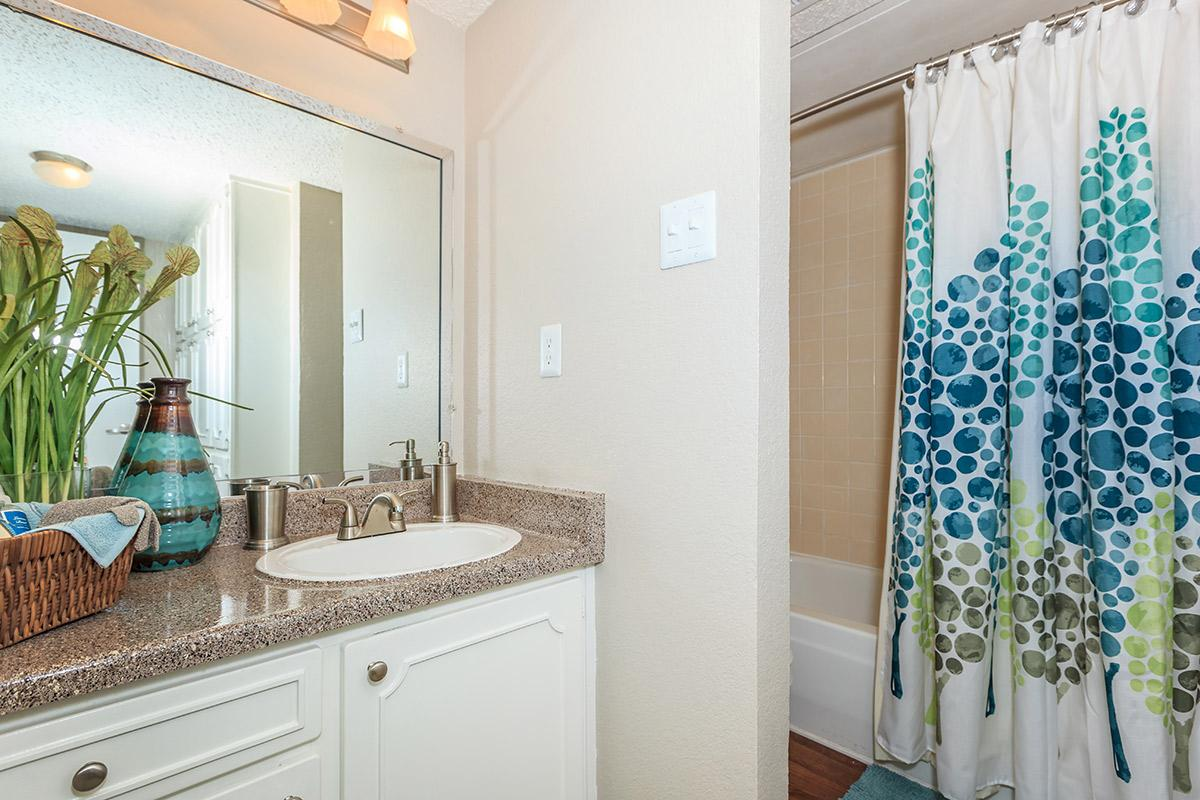 a kitchen with a sink and a shower curtain