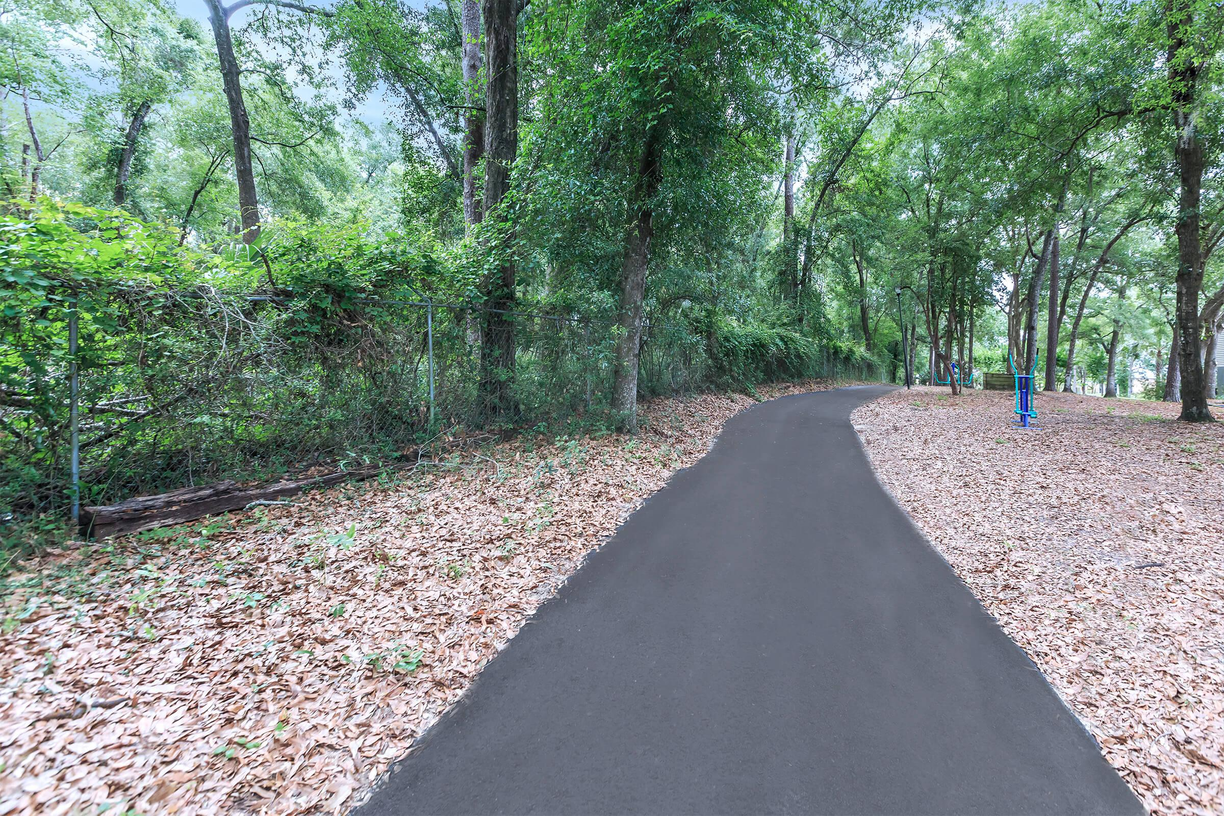 a dirt path next to a tree