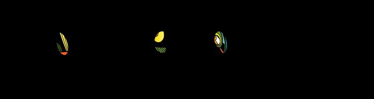 Place Du Plantier Logo