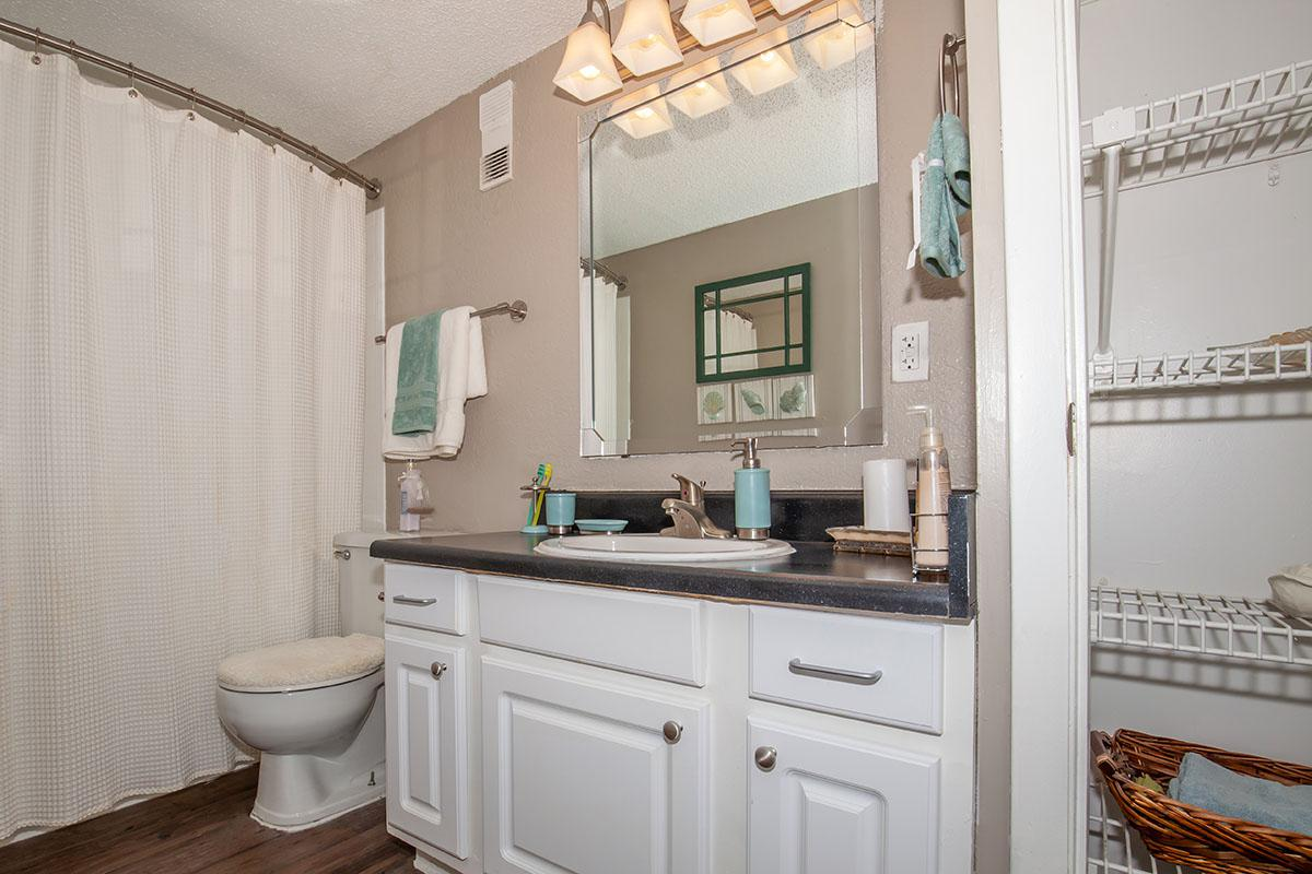 The Muscovy modern bathroom at Heron Walk Apartments in Jacksonville, Florida